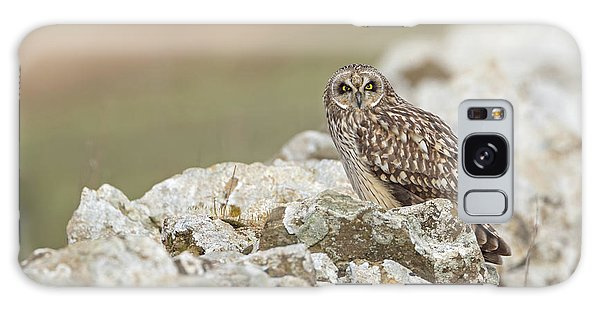 Short-eared Owl In Cotswolds Galaxy Case