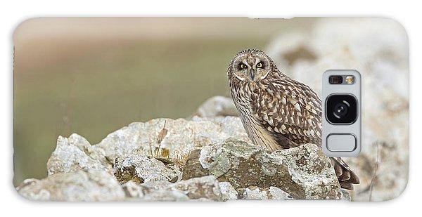 Short-eared Owl In Cotswolds Galaxy Case