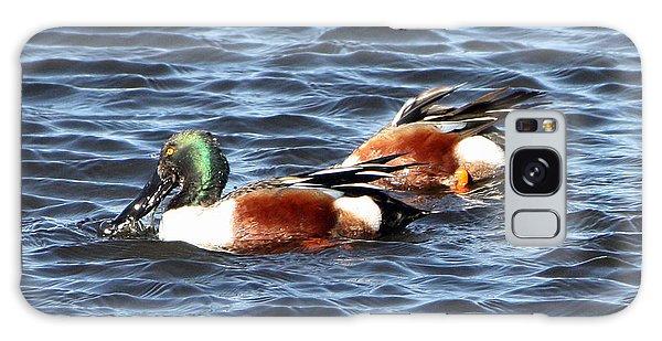 Shoveler Duck 1 Galaxy Case