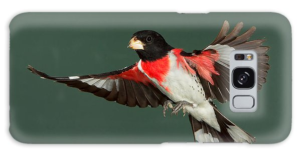 Showing His True Colors Galaxy Case by Gerry Sibell