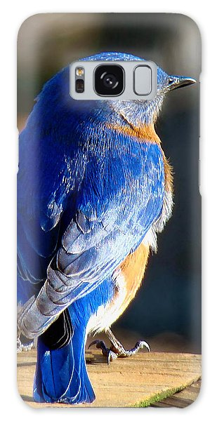 Showing Off My Beautiful Blue Feathers In The Sunlight Galaxy Case
