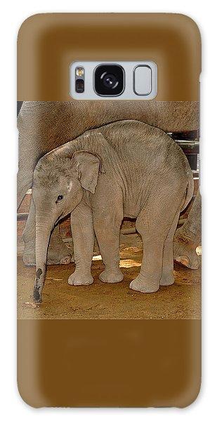 Shy Baby Elephant Galaxy Case