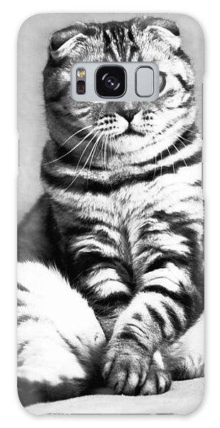 Shy Cat Galaxy Case