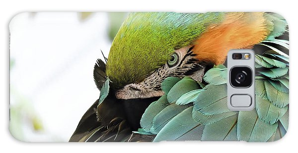 Shy Macaw Galaxy Case