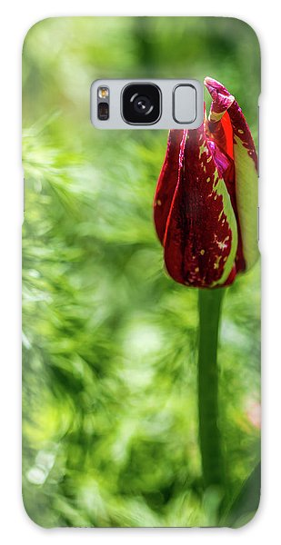 Shy Tulip Galaxy Case