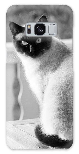 Siamese Cat Galaxy Case