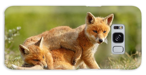 Sibbling Love - Playing Fox Cubs Galaxy Case by Roeselien Raimond