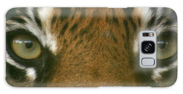 Siberian Eyes - Tiger Galaxy Case by David Dunham