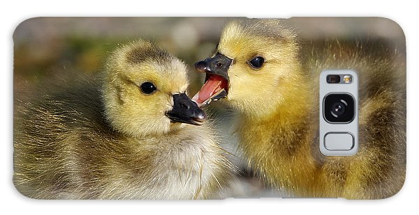 Sibling Love - Baby Canada Geese Galaxy Case