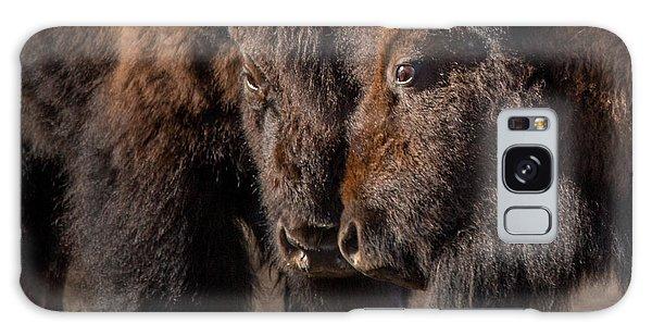 Siblings // Lamar Valley, Yellowstone National Park Galaxy Case