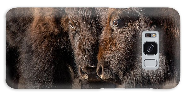 Siblings // Lamar Valley, Yellowstone National Park Galaxy Case