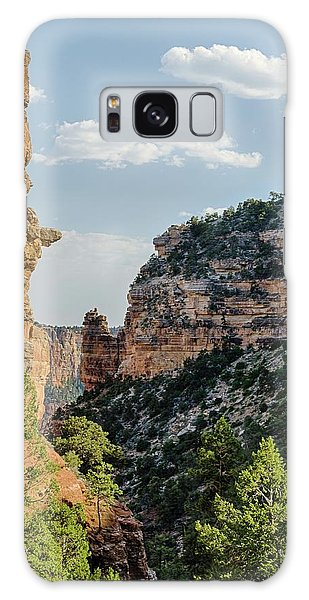 Side Canyon View Galaxy Case