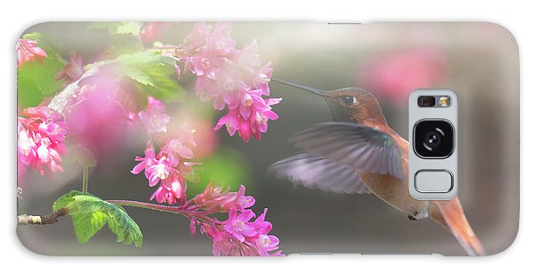 Sign Of Spring 2 Galaxy Case by Randy Hall