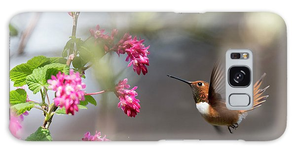 Sign Of Spring 3 Galaxy Case by Randy Hall