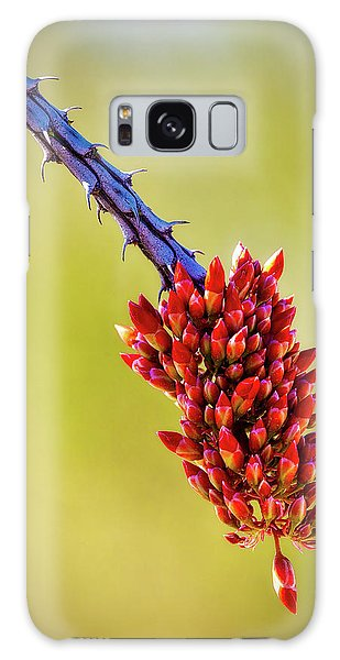 Galaxy Case featuring the photograph Signs Of Life by Rick Furmanek
