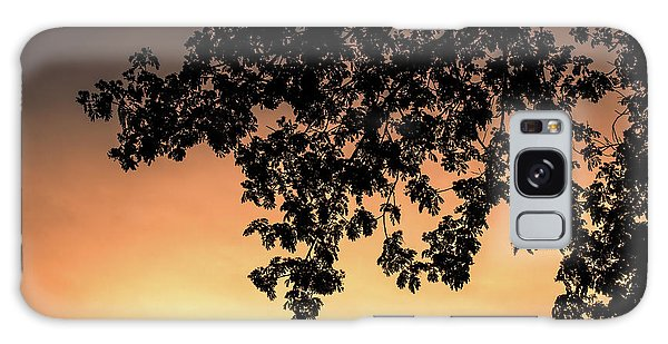 Silhouette Tree In The Dawn Sky Galaxy Case by Jingjits Photography