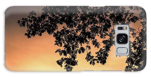 Silhouette Tree In The Dawn Sky Galaxy Case