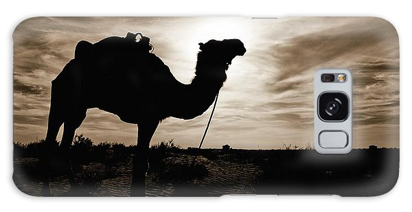 Silhouetted Camel, Sahara Desert, Douz Galaxy Case by David DuChemin
