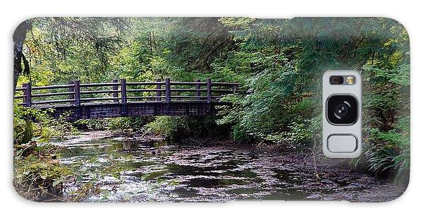 Silver Creek Falls #38 Galaxy Case