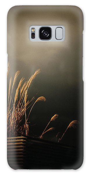 Silver Grass Galaxy Case by Rachel Mirror