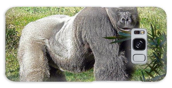 Gorilla Galaxy S8 Case - Silverback by Steven Sparks