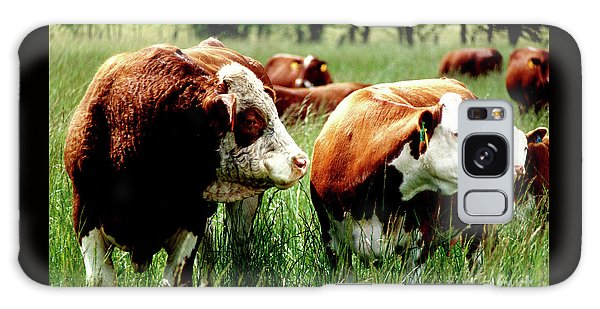 Simmental Bull And Hereford Cow Galaxy Case by Larry Campbell