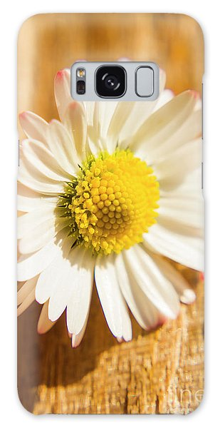 Herbs Galaxy Case - Simple Camomile  In Sunlight by Jorgo Photography - Wall Art Gallery