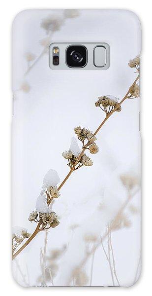 Simplicity Of Winter Galaxy Case