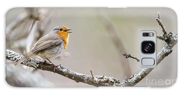 Singing Robin Galaxy Case by Torbjorn Swenelius