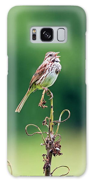 Singing Song Sparrow Galaxy Case by Jennifer Nelson