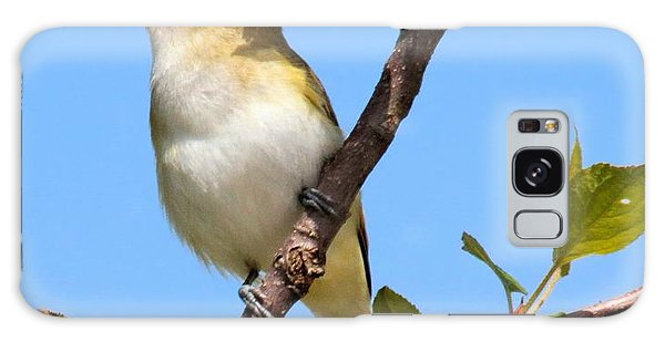 Singing Red-eyed Vireo Galaxy Case