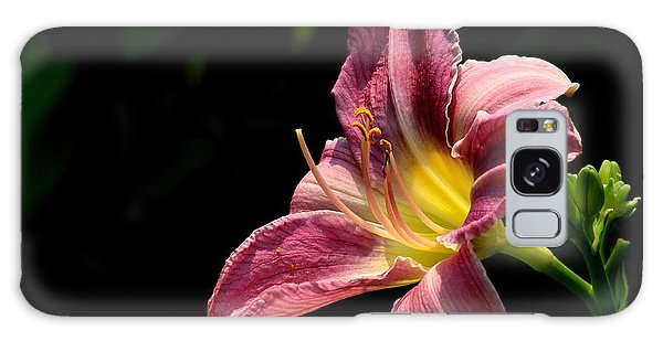 Single Pink Day Lily Galaxy Case by Kenny Glotfelty