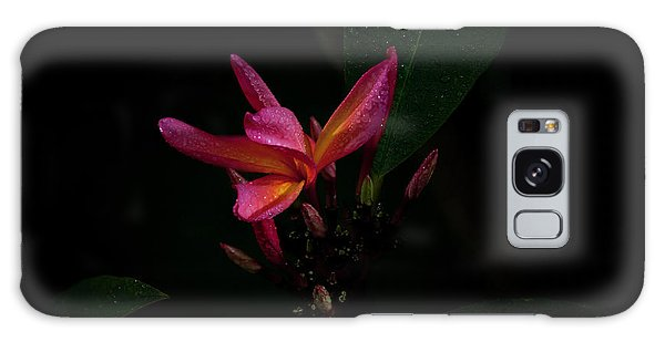 Single Red Plumeria Bloom Galaxy Case
