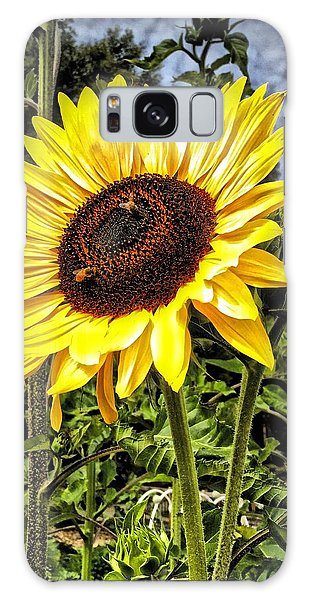 Single Sunflower Galaxy Case