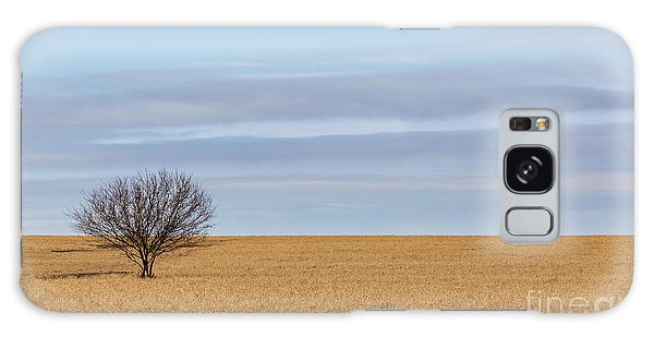 Single Tree In Large Field With Cloudy Skies Galaxy Case