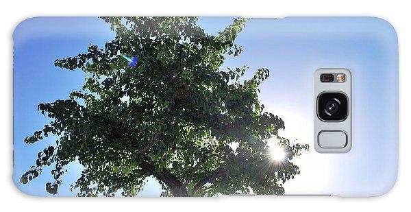 Single Tree - Sun And Blue Sky Galaxy Case by Matt Harang