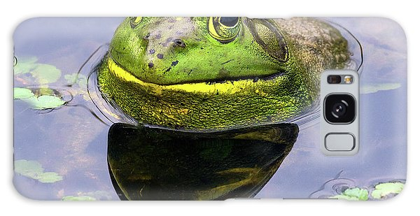 Sir Bull Frog Galaxy Case