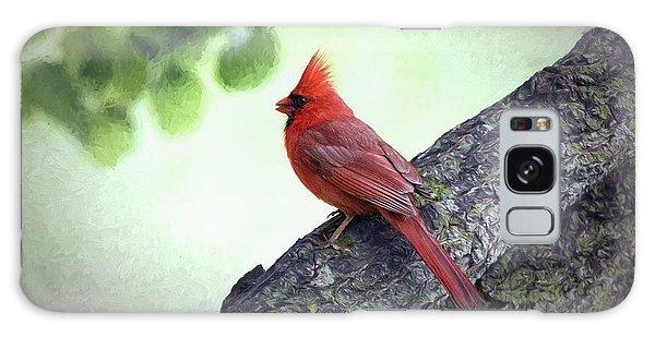 Sir Cardinal Galaxy Case