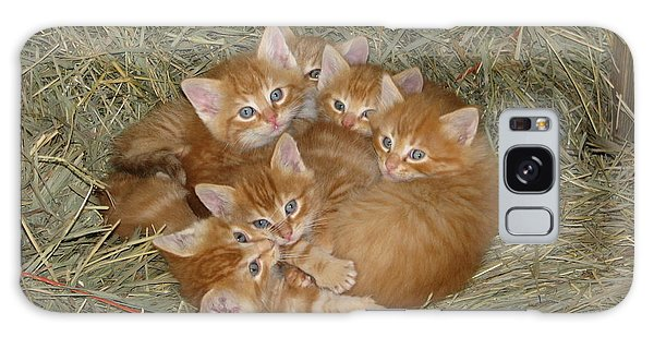 Six Kittens Galaxy Case