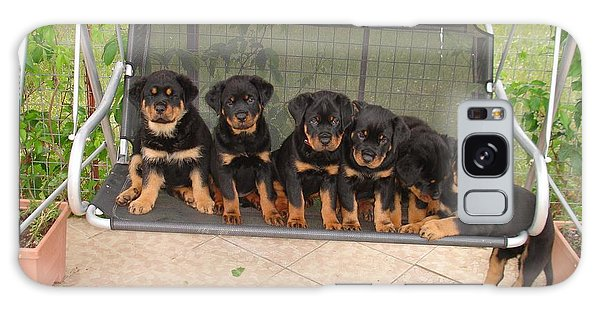 Six Rottweiler Puppies Lined Up On A Swing Galaxy Case