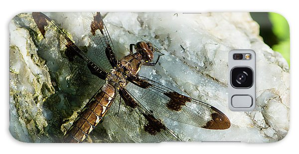 Six Spotted Dragonfly Galaxy Case