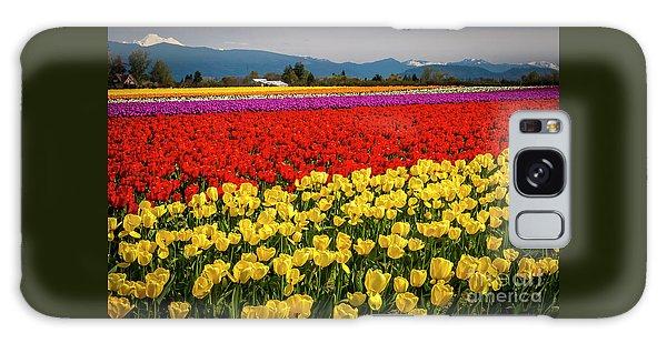 Skagit Valley Tulips  Galaxy Case