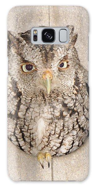 Skreech Owl Galaxy Case