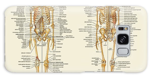 Skeletal Anatomy Galaxy Case by Gina Dsgn
