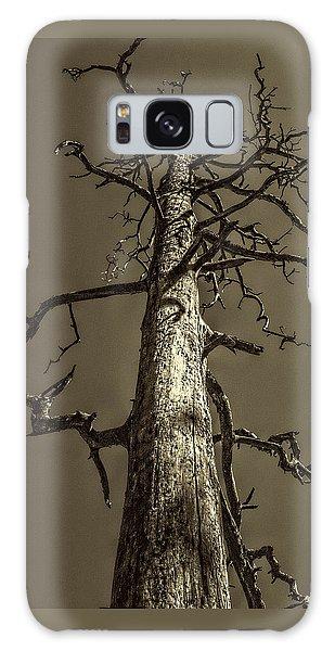 Skeletal Tree Sedona Arizona Galaxy Case