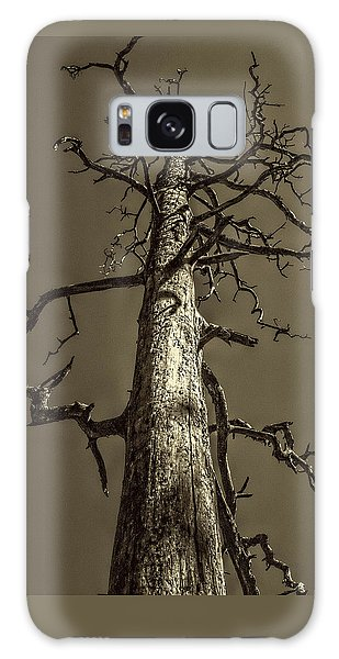 Skeletal Tree Sedona Arizona Galaxy Case