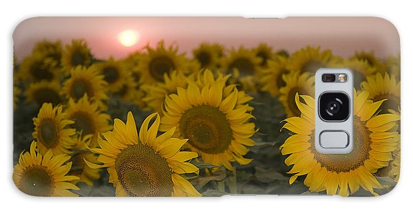 Skn 2178 The Sunflowers At Sunset  Galaxy Case by Sunil Kapadia