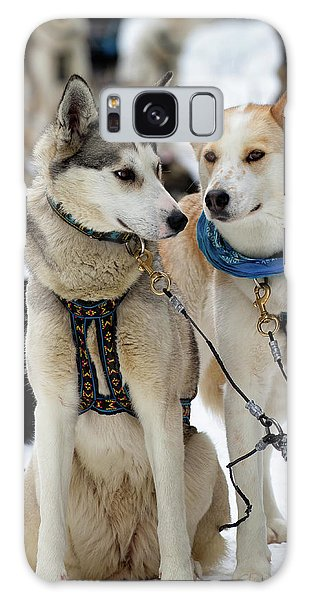 Sled Dogs Galaxy Case