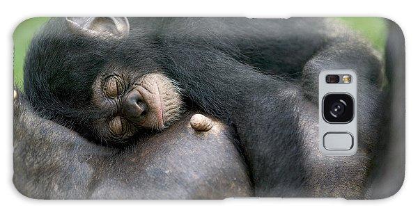 Nigeria Galaxy Case - Sleeping Baby Chimpanzee by Cyril Ruoso