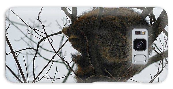 Sleeping Coon Galaxy Case